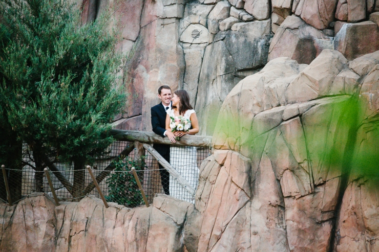 couple portrait in front of rock face at Memphis zoo Teton Trek exhibit